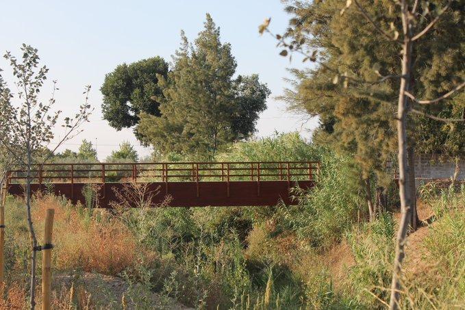 La CHG adjudica por 78.000 euros el mantenimiento y la vigilancia de la restauración ambiental del arroyo Riopudio (Sevilla)