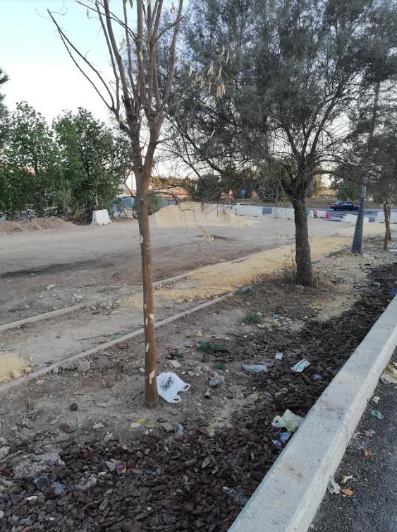 NUEVA DENUNCIA POR EL IMPACTO AMBIENTAL DEL CENTRO COMERCIAL DE PALMAS ALTAS