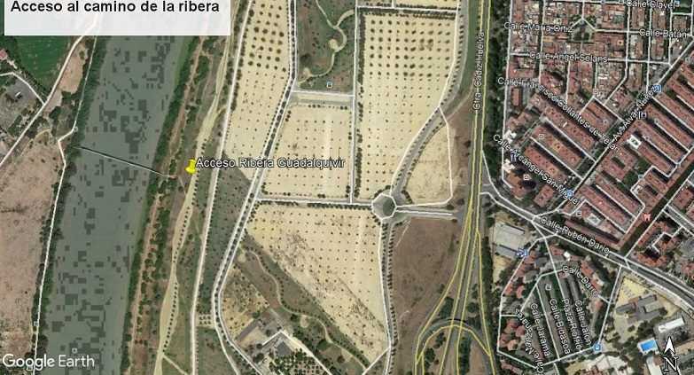 Ribera del Guadalquivir III  Isla de Tercia