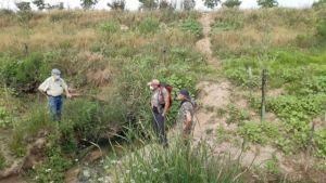 Concluyen las acciones de renaturalización en el tramo inferior del parque metropolitano Riopudio. Otra forma de actuar en los cauces, es posible